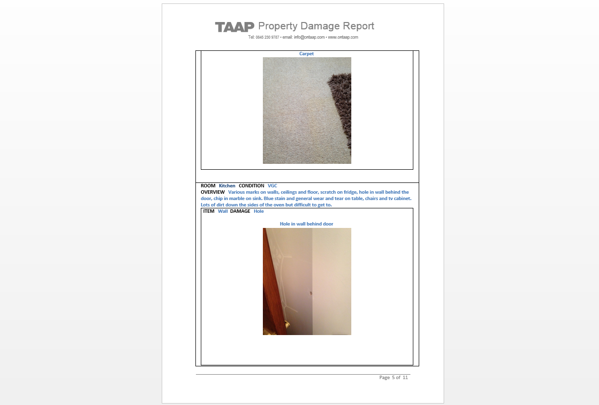 TAAP Property Damage Report